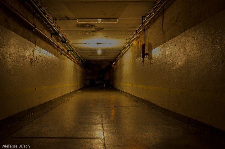 Bunker Erich