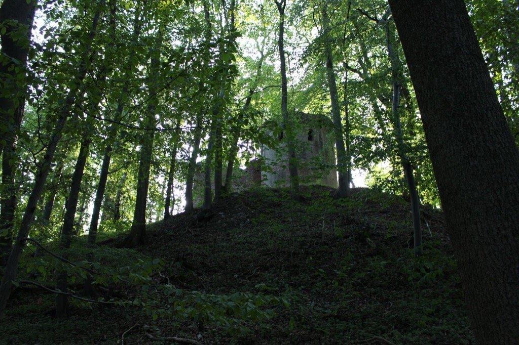 Burgruine Allerburg