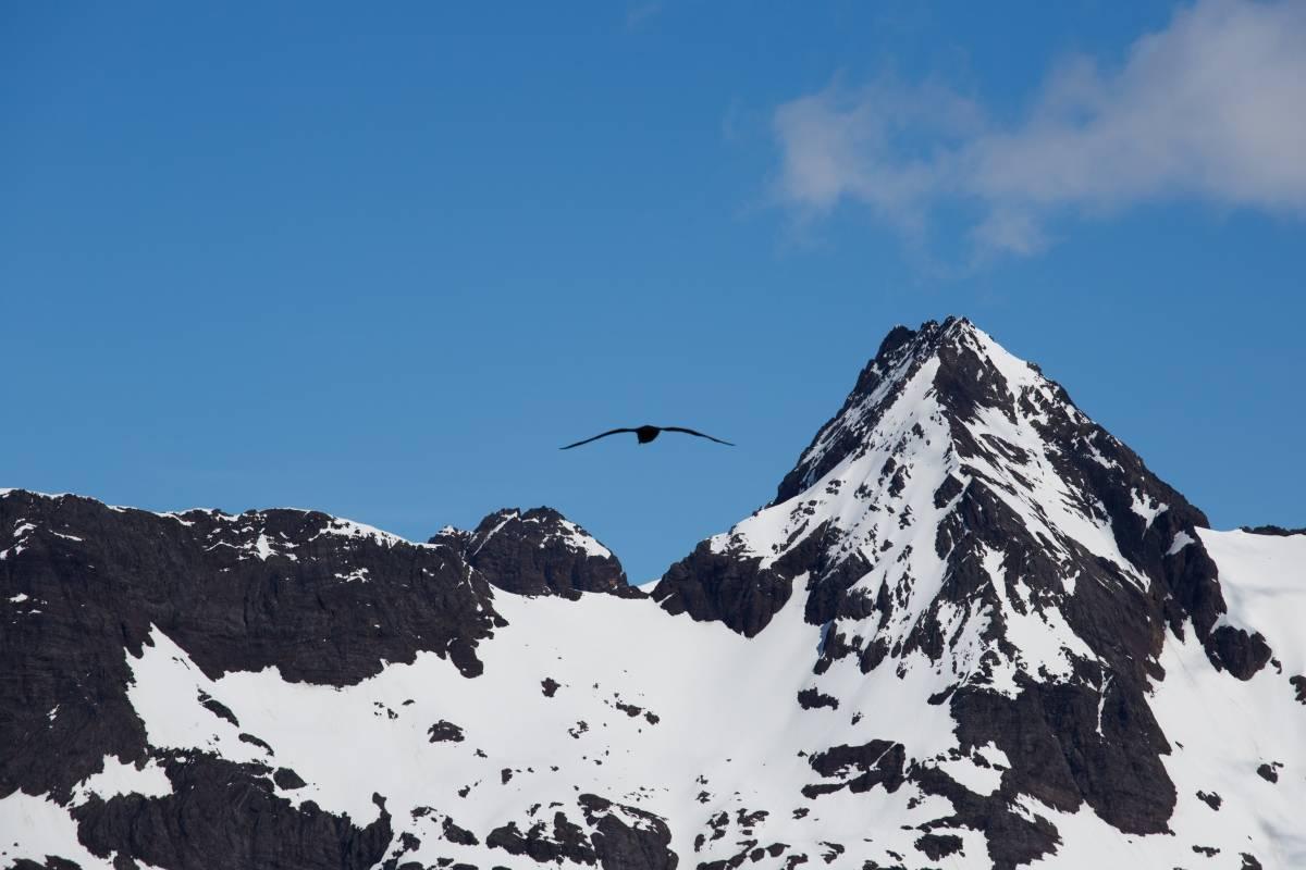 Berge Südgeorgien