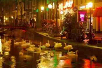 Amsterdam Rotlichviertel
