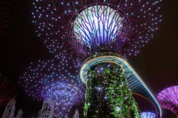 Supertrees Grove Lichtshow
