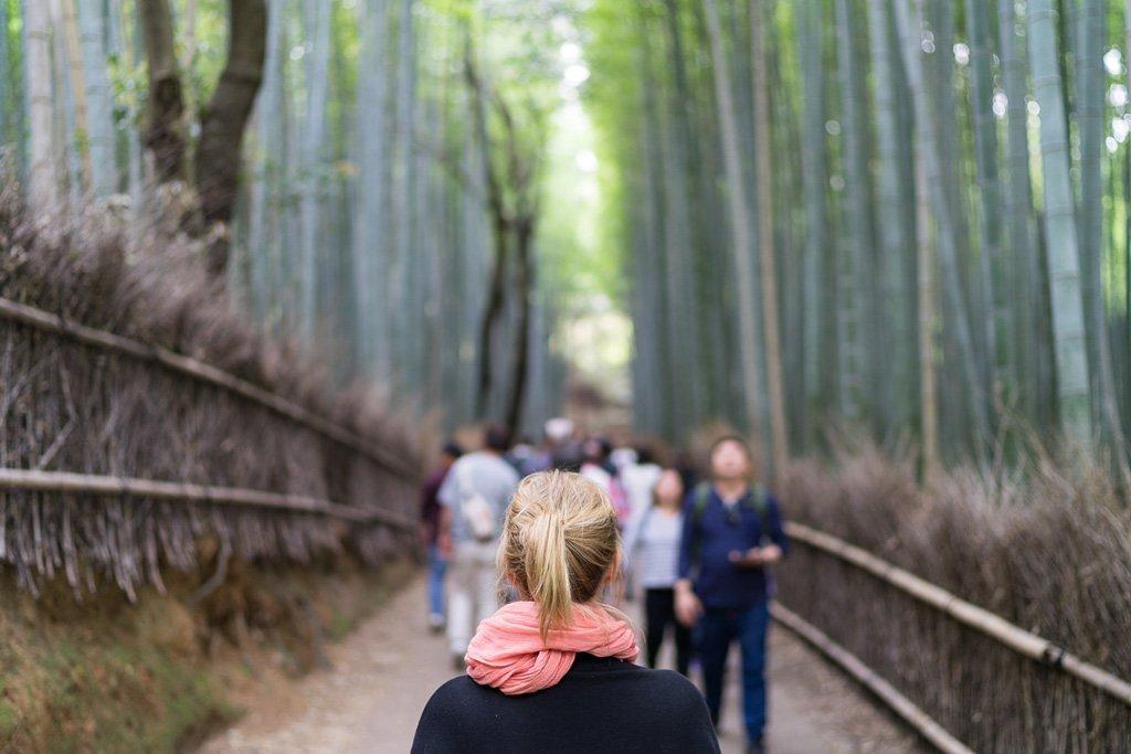 Bambuswald in Arashiyama, Kyoto