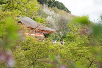 Kiyomiza-dera, Kyoto