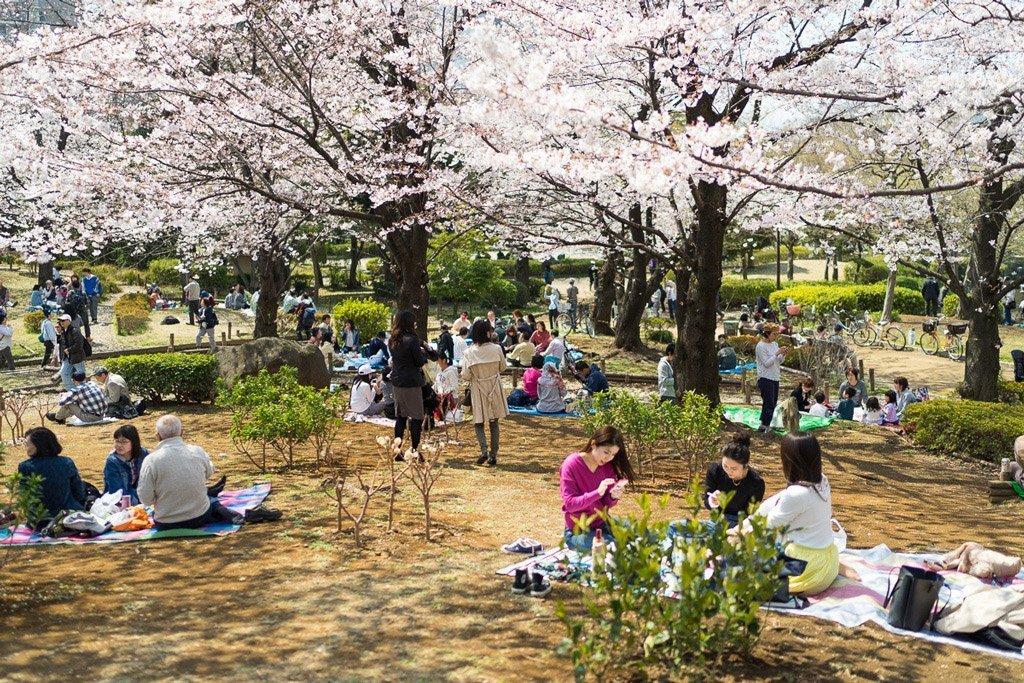 Sumida Park, Tokio