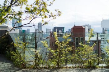 Tokyu Plaza Harajuku Dachterrasse