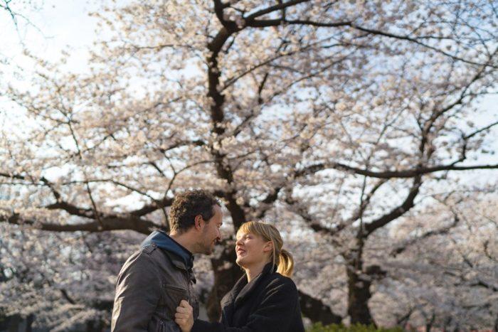 Kirschblüte in Japan: Die beste Reisezeit und die schönsten Orte!