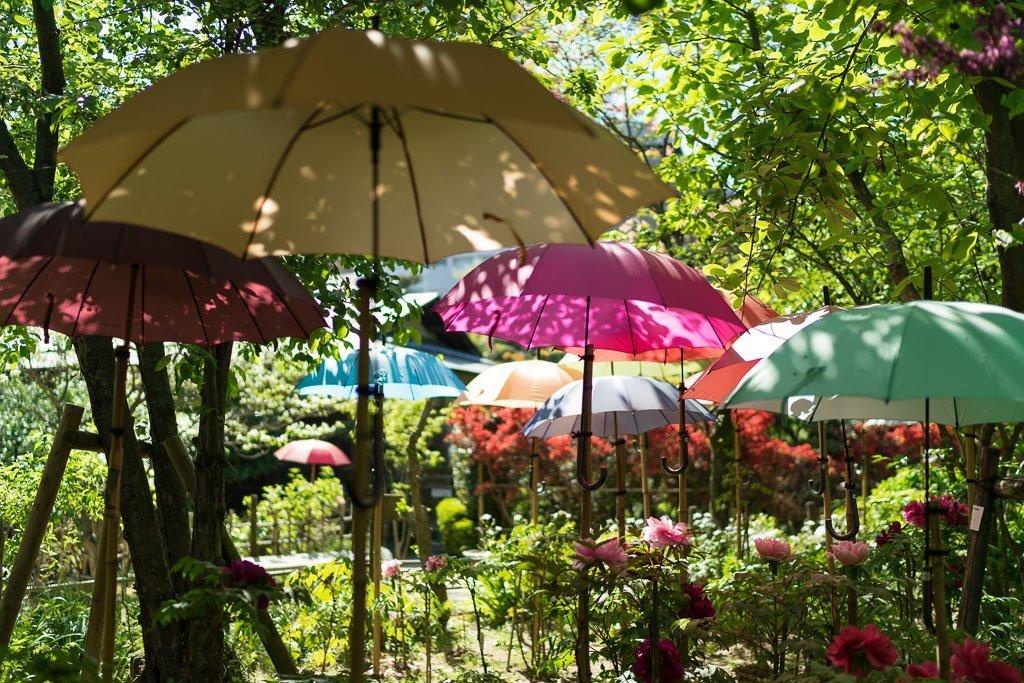 Shukkei-en Garten