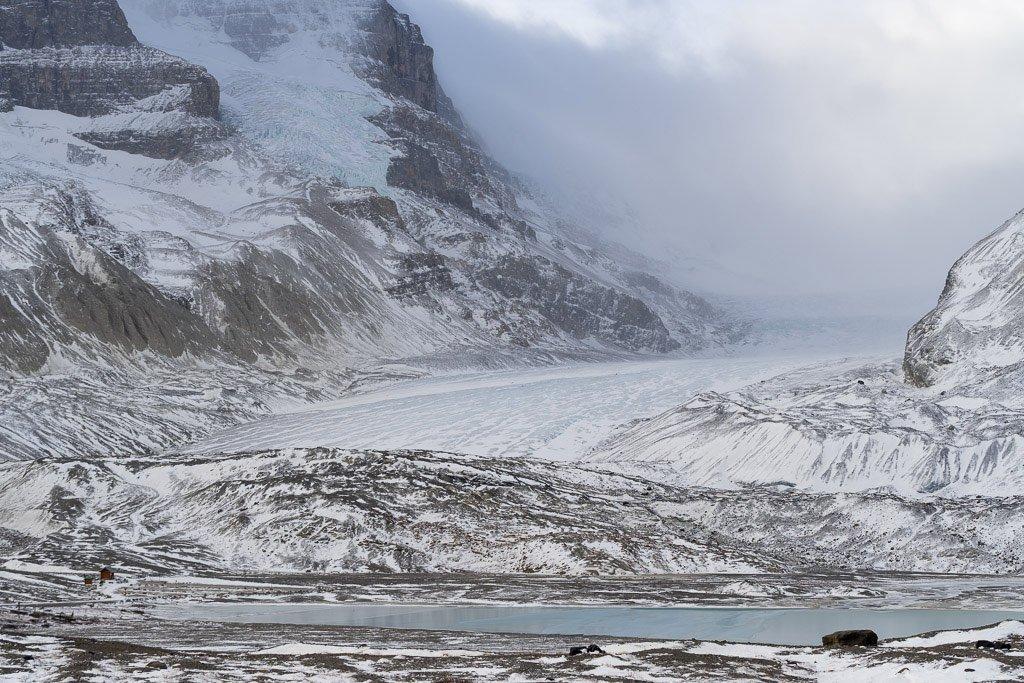 Columbia Icefield Glacier