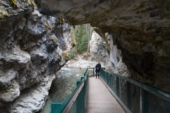 Der Weg durch den Johnston Canyon