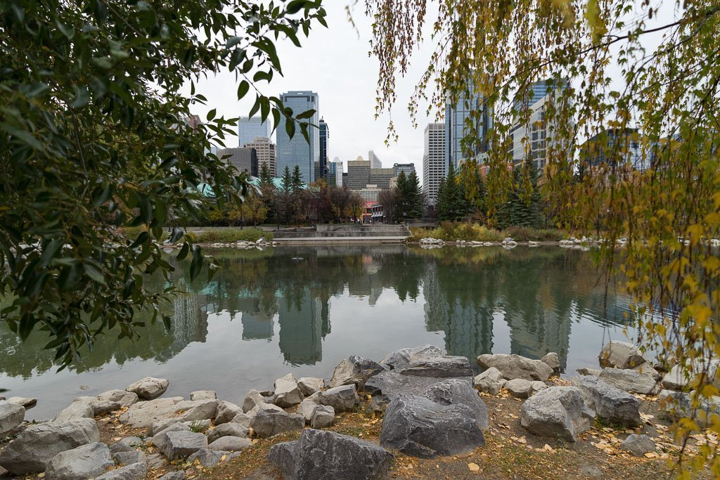 Calgary fotografiert von dem Prince Island Park.