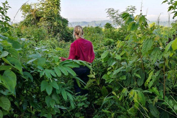 Aufstieg zur Shwe Taung Pagode