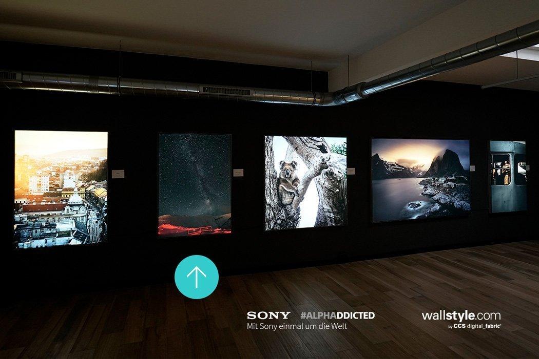 Unsere Fotos in der Ausstellung