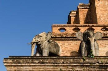 Wat Chedi Luang in der Altstadt