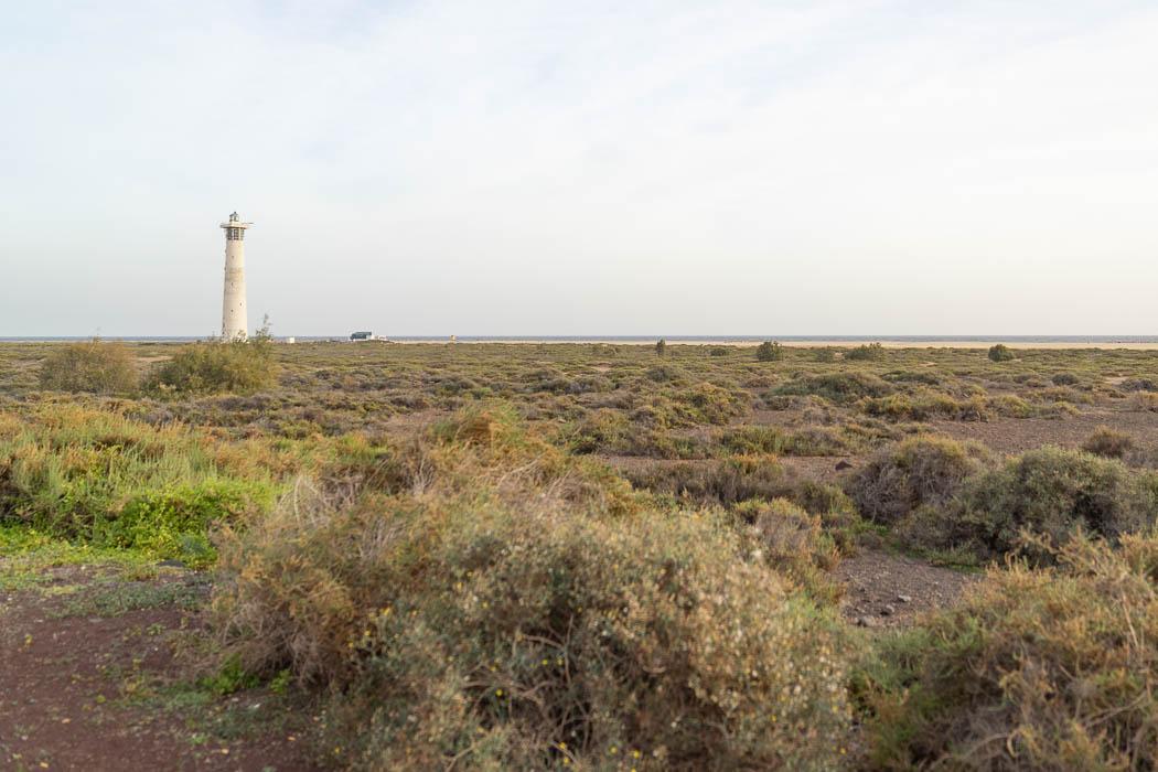 Der Leuchtturm und der Strand in Jandia
