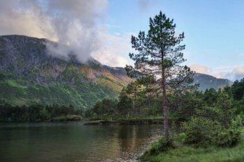 Campingplatz Hov Hyttegrend