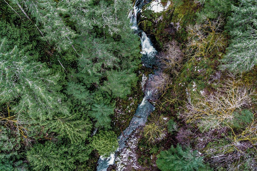 Blick von der Eisenbahnbrücke Goldstream Provincial Park