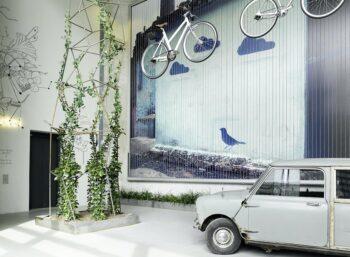 Hoher Raum mit Trabant und Kletterpflanze