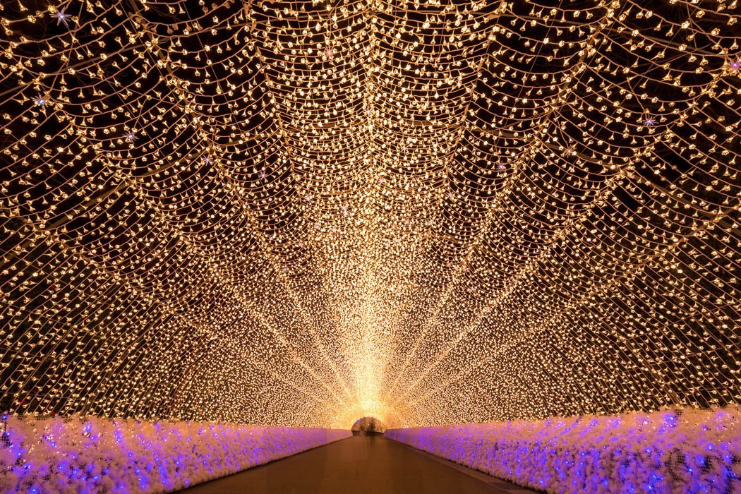 Lichttunnel im Blumenpark Nabana no Sato