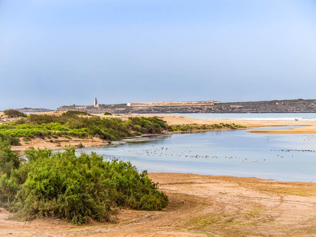 Küste Diabat