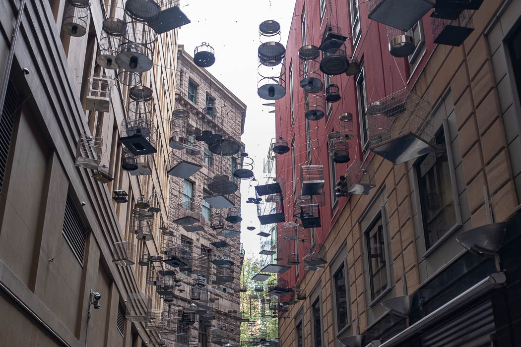Angel Place Bird Cages