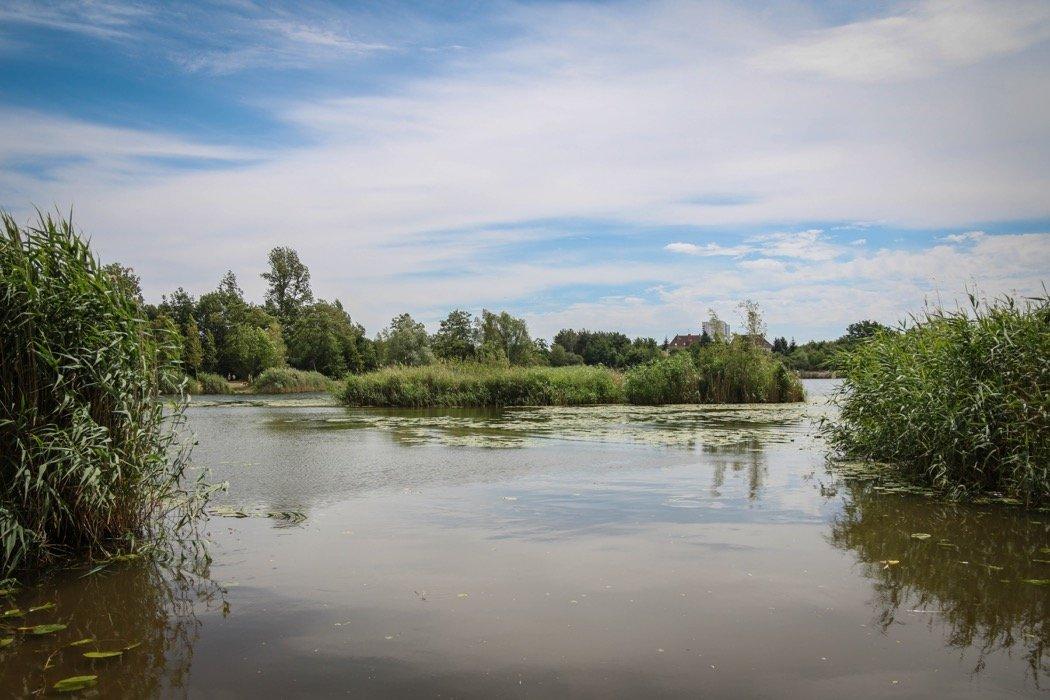 Dölauer Heide
