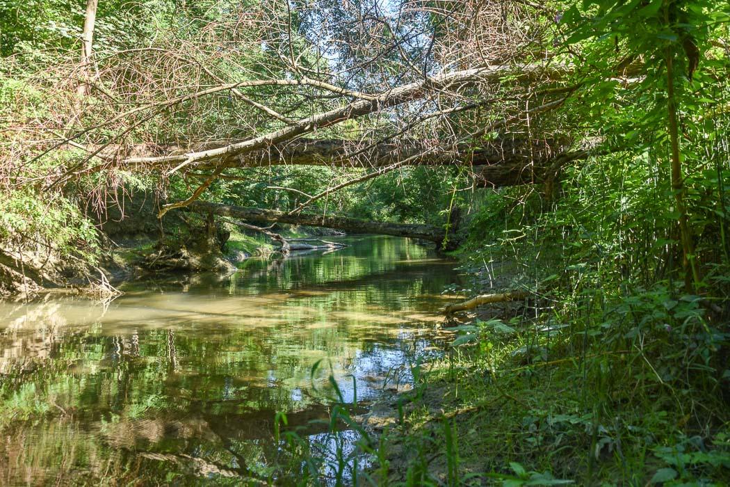 Nebenarm Wasserschloss