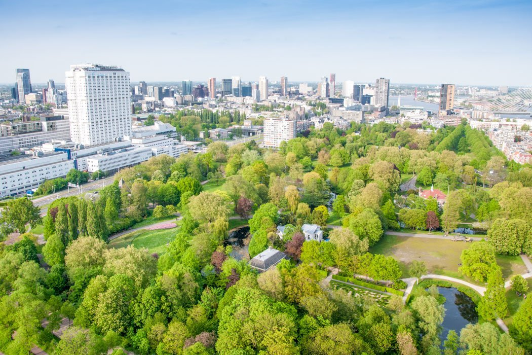 Der Het Park in Rotterdam