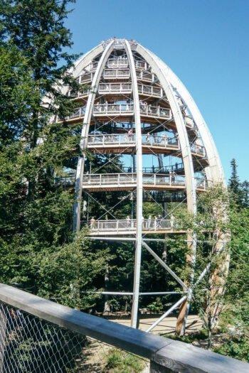 Aussichtsplattform im Baumwipfelpfad, Bayerischer Wald