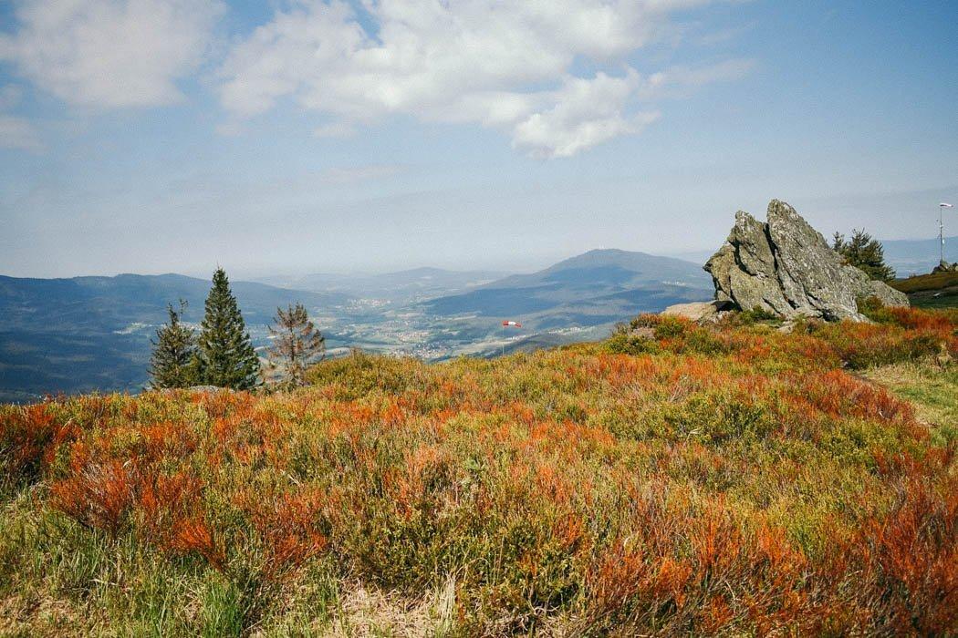 Blick vom Osser im Bayerischen Wald