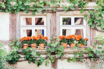 Fensterläden in Bad Windsheim