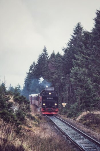 Die Schmalspurbahn im Harz