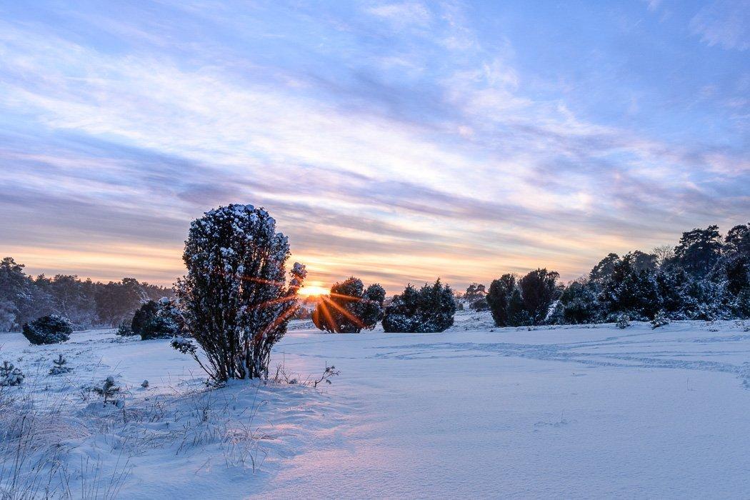 Winterlandschaft Lüneburger Heide