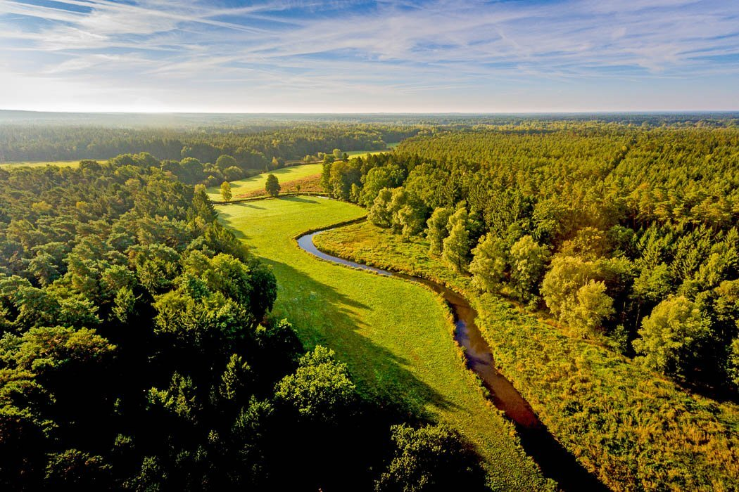 Luftbild der Lüneburger Heide