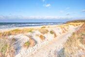 Dünen auf Hiddensee an der Ostsee