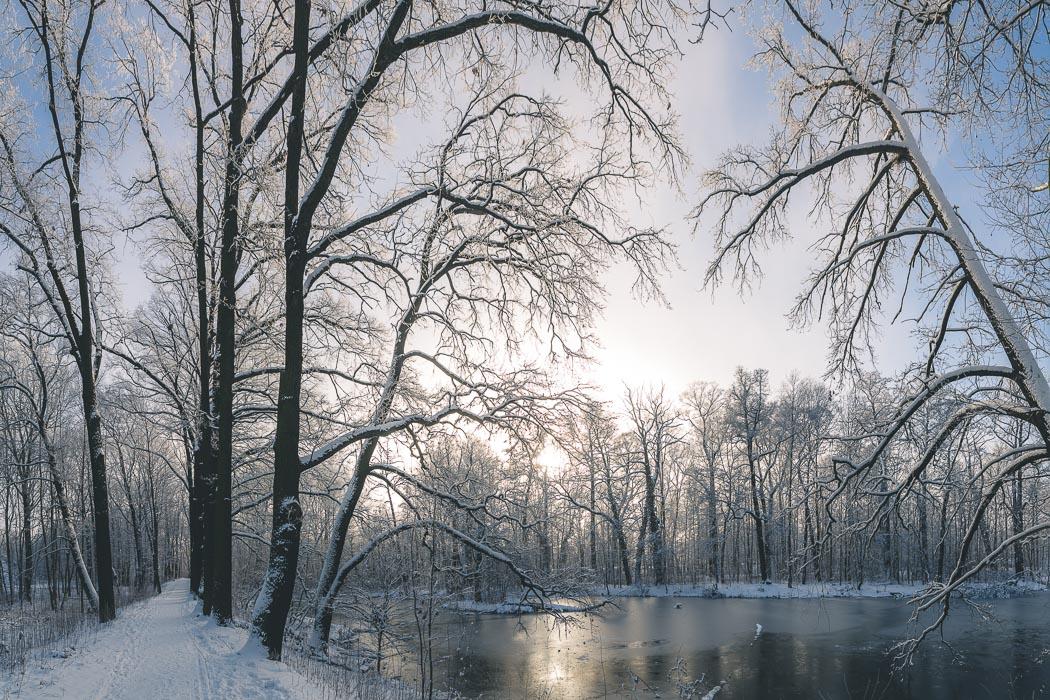 Winter Niederlausitz