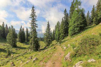 Wanderweg in Berchtesgaden