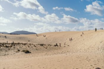 Dünen bei Corralejo