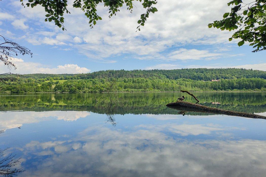 Das Vogelschutzgebiet Mindensee.
