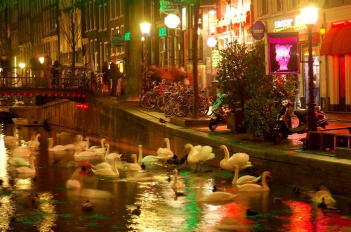 Die besten Fototipps für Amsterdam: Mehr als nur Grachten