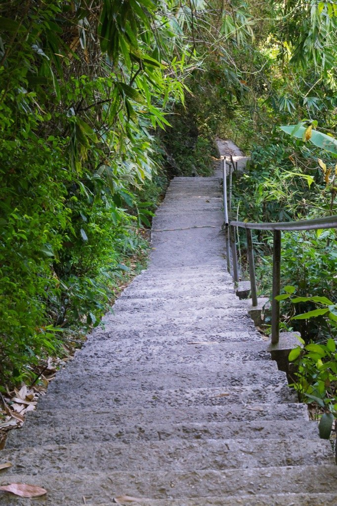 Weg zum Leuchtturm Apo Island