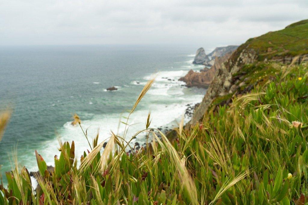Cabo da Roca - Die Steilküste
