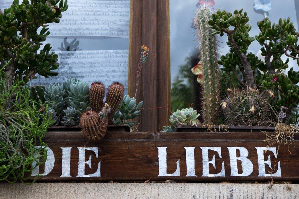 Erfurt Liebe