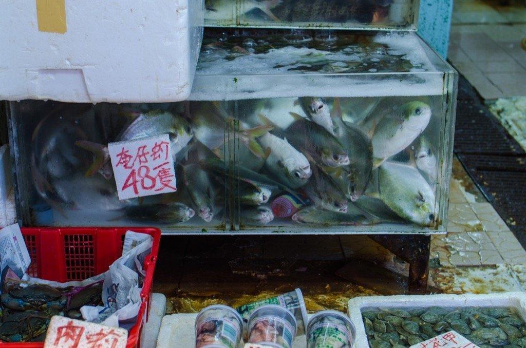 Märkte Hongkong