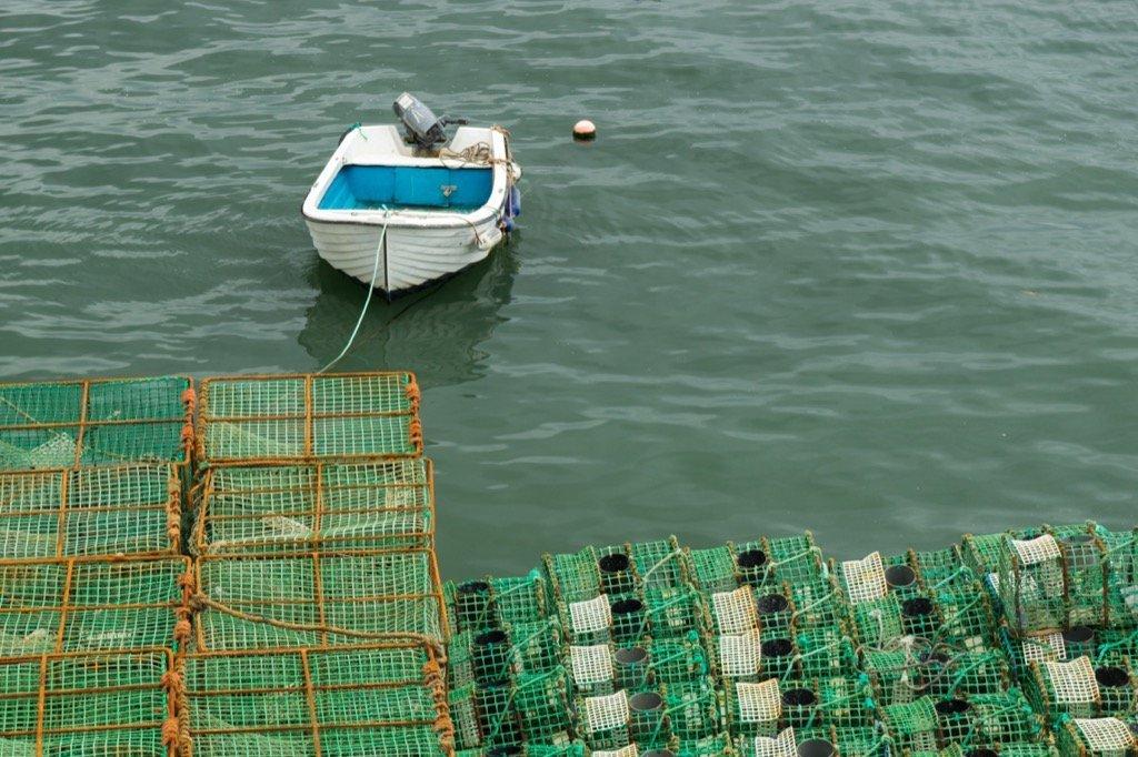 Cascais Hafen