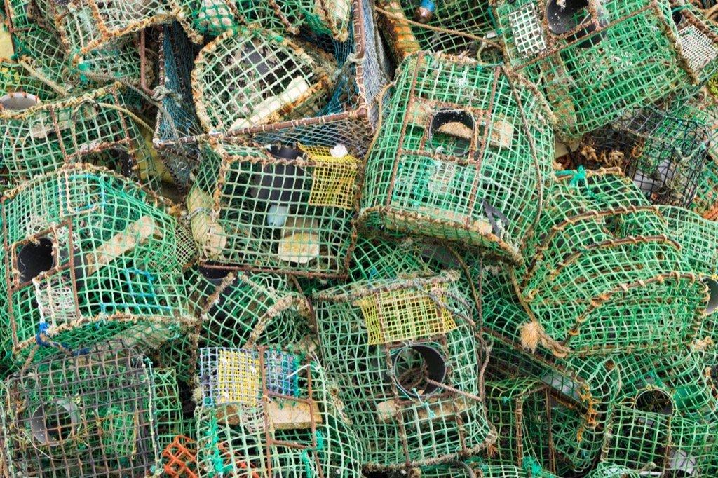 Fischernetze im Hafen von Cascais