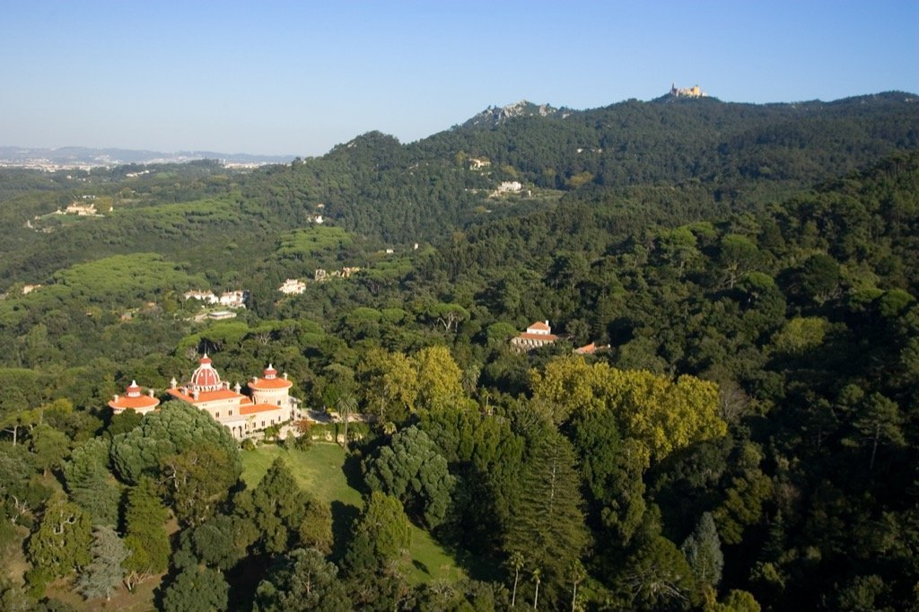 Monserrate Sintra