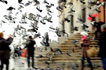 Filme, die in Istanbul spielen