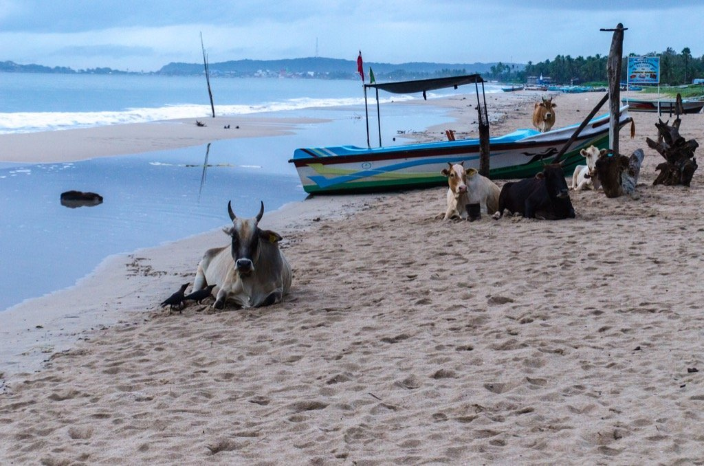 Strand von Uppuveli, Sri Lanka