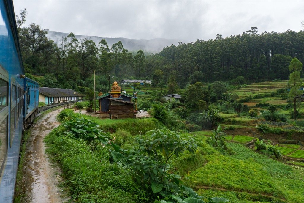 Zugfahrt Tempel Teeplantagen